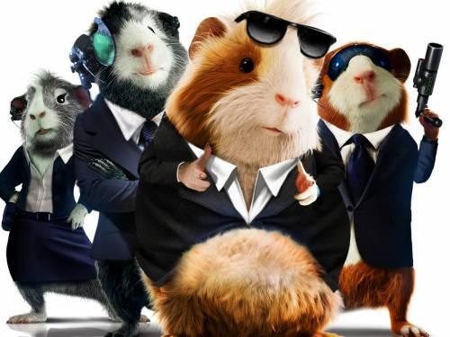 Смотреть фильм морские свинки